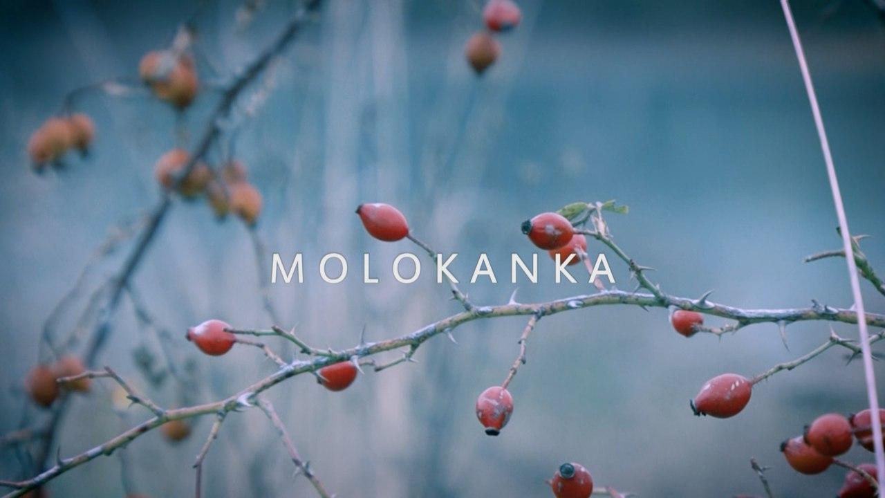 molokanka1
